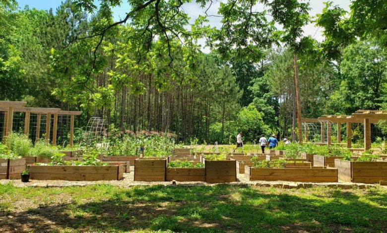 210222144127 01 atlanta food forest super 169 f5qEUknow-trending