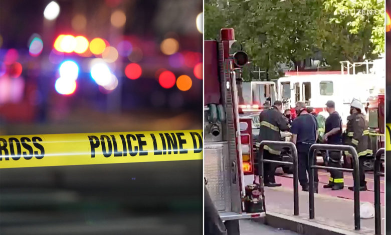 two asian women stabbed index jGpvNnnow-trending