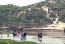 migrant2 odb81xnow-trending