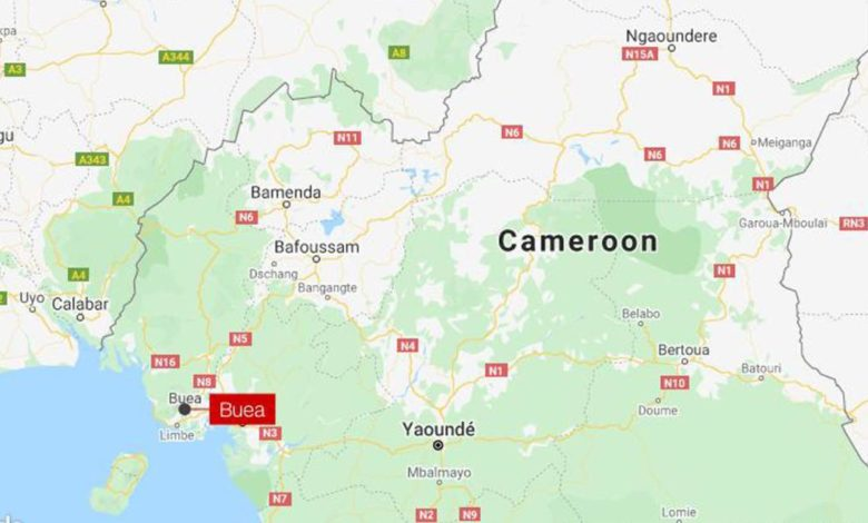 211014152343 map buea cameroon super 169 FUo80Enow-trending